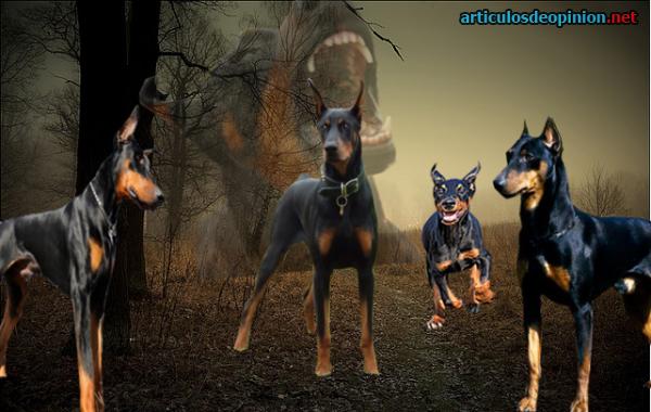juego de los perros de la nintendo: