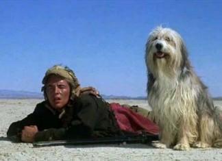 Un muchacho y su perro
