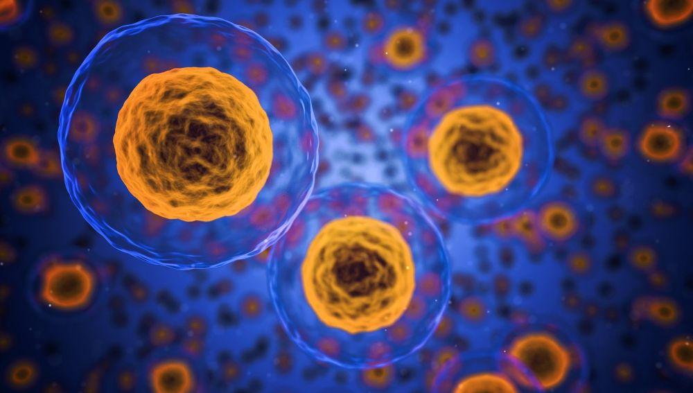 Se confirma una variable menos letal del coronavirus